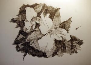 "Graphite on Paper, 8"" x 11"", 2011"